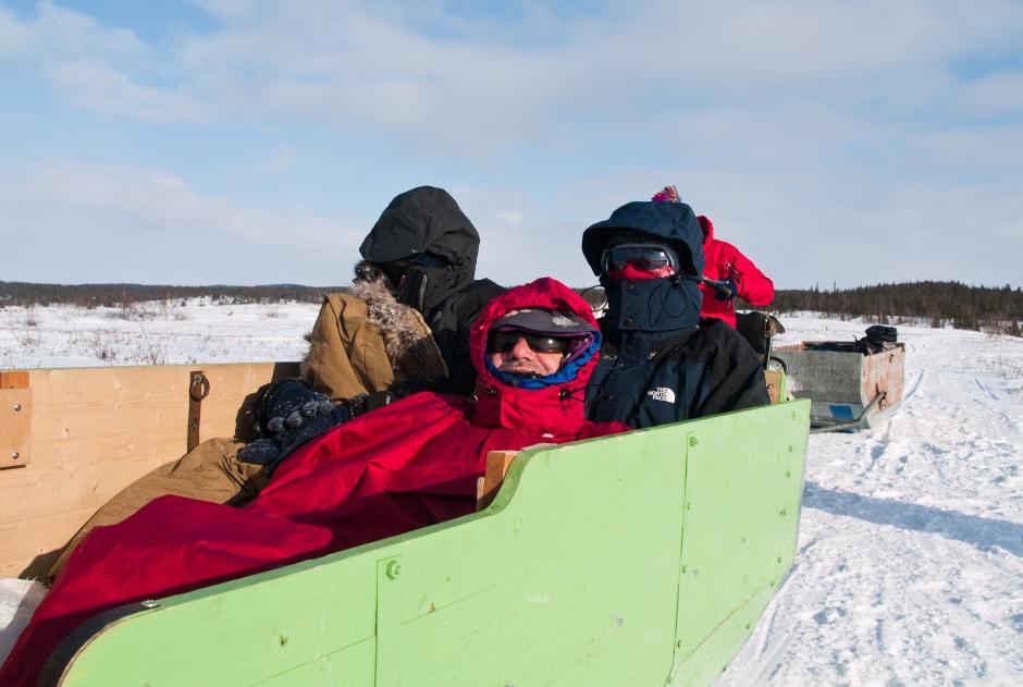 Nenets ride