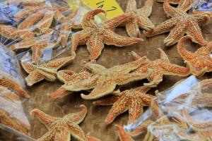Unusual delicacies of Hong Kong