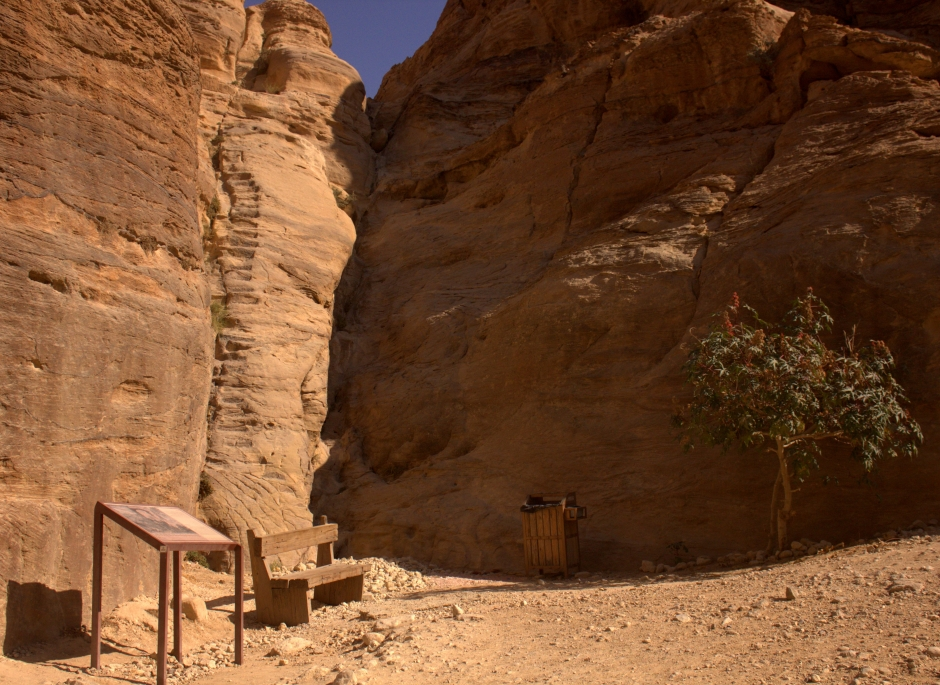 And trotted along Wadi Musa