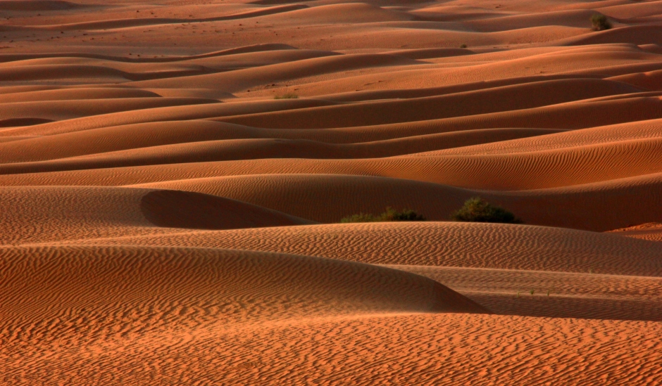 And its desert's soft sensual curves