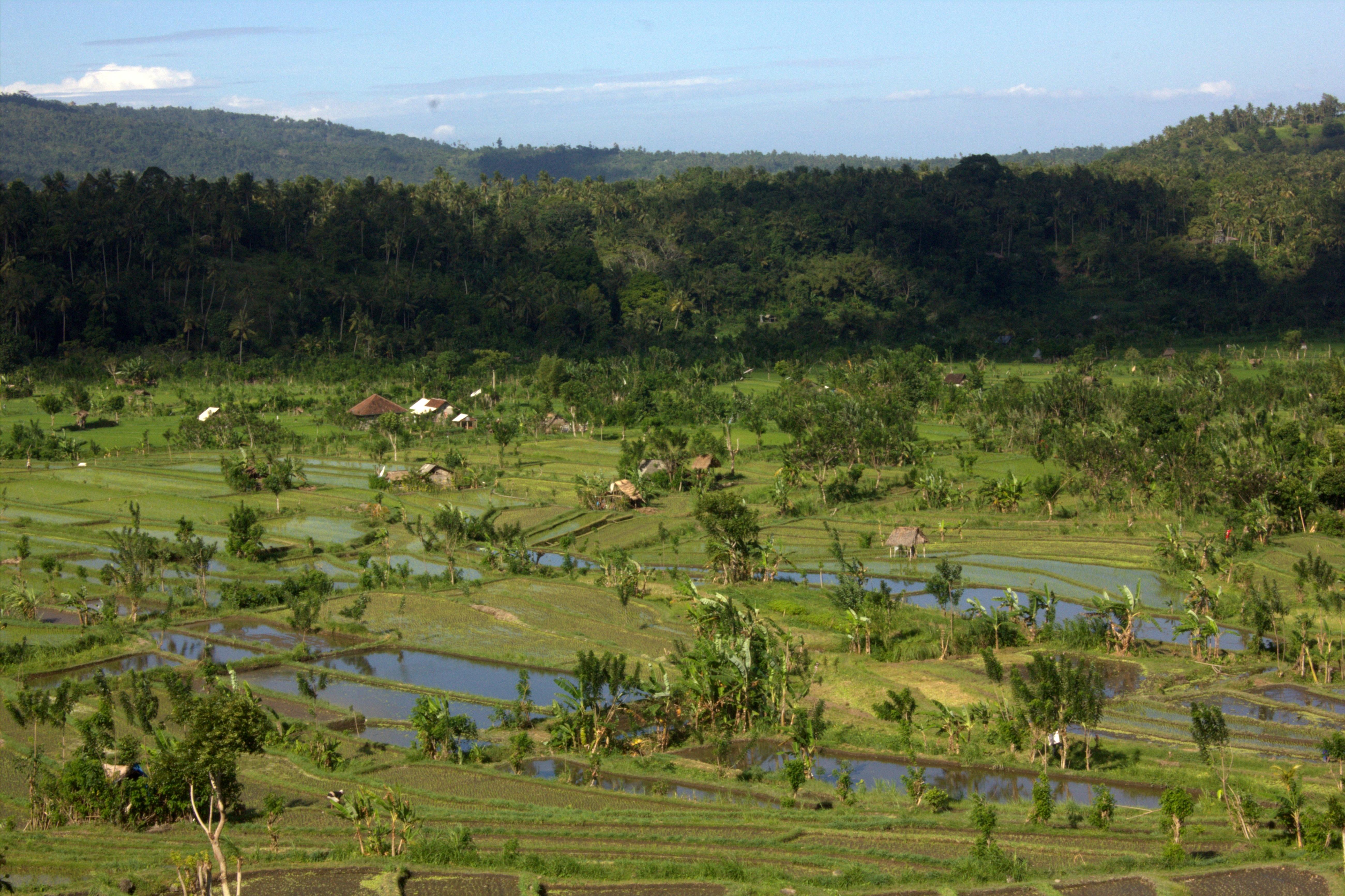 East Bali had been