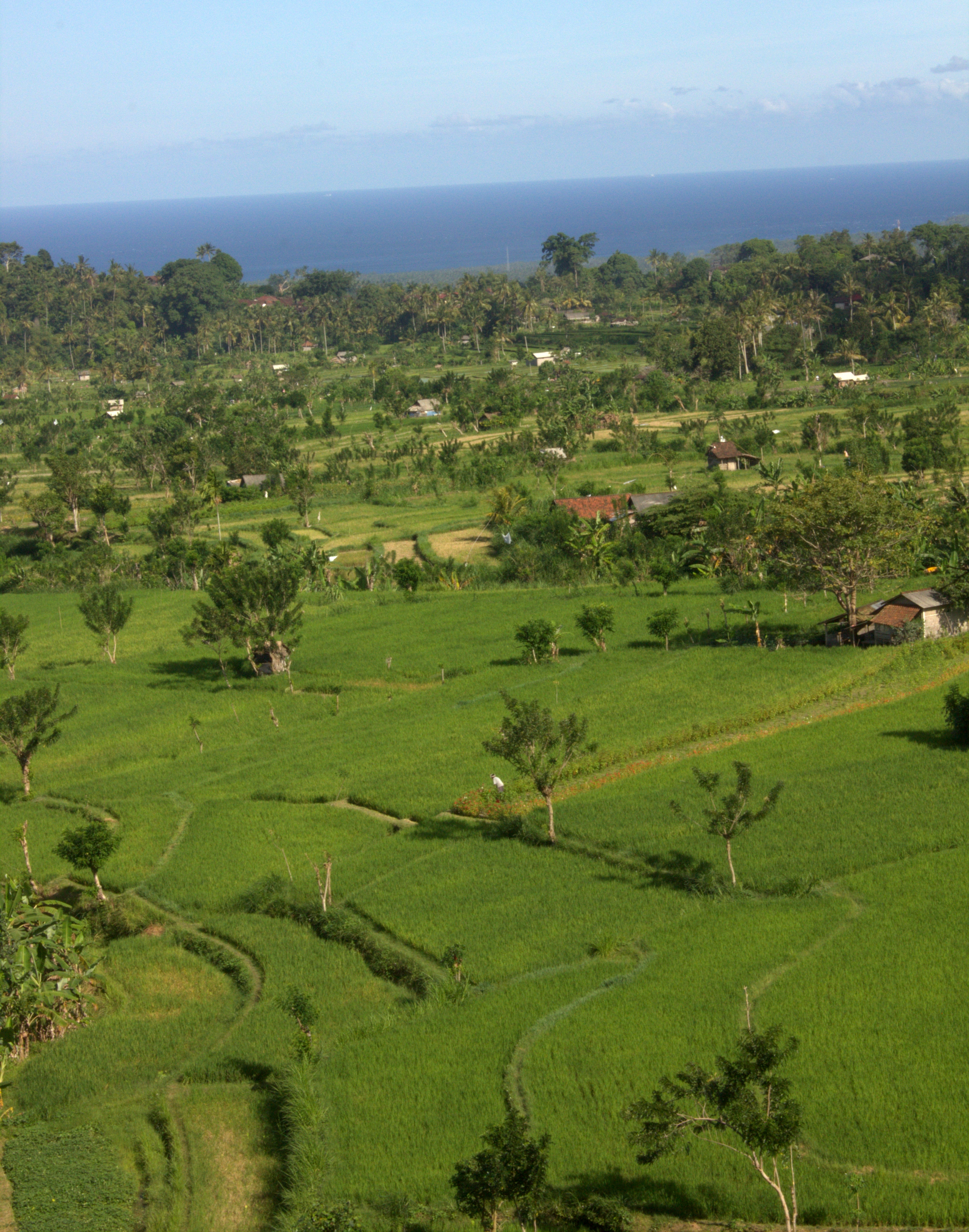Bali is a complete travel experience