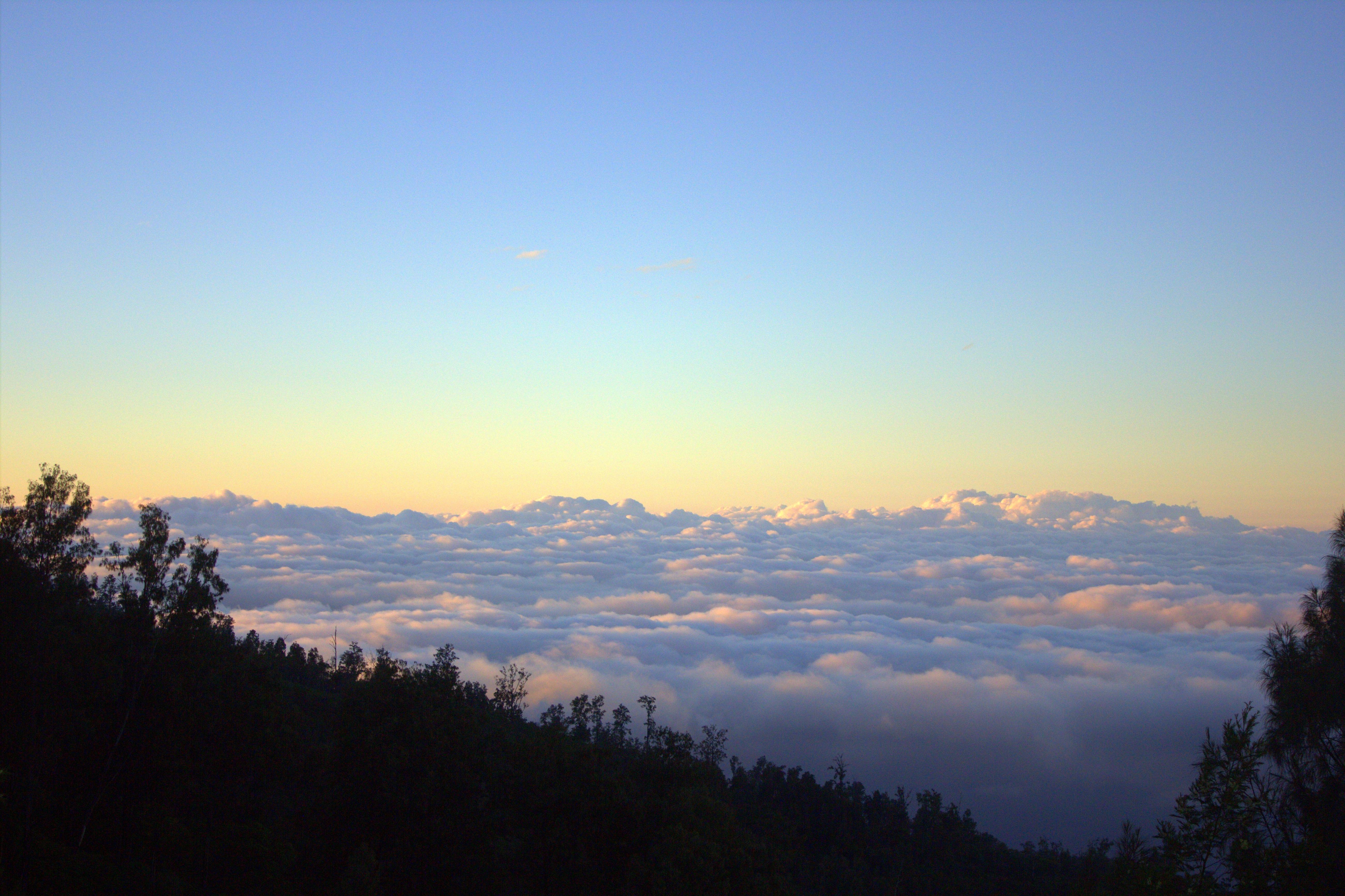 Cloud beds