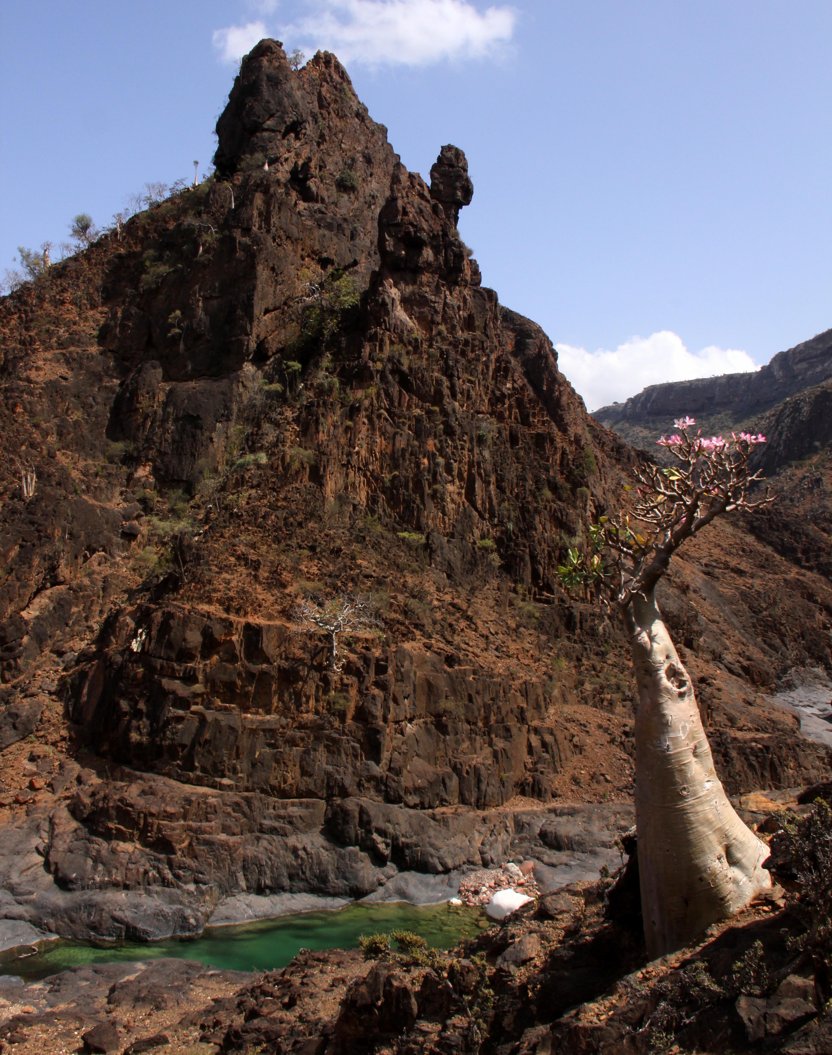 Wadi Dirhur had been