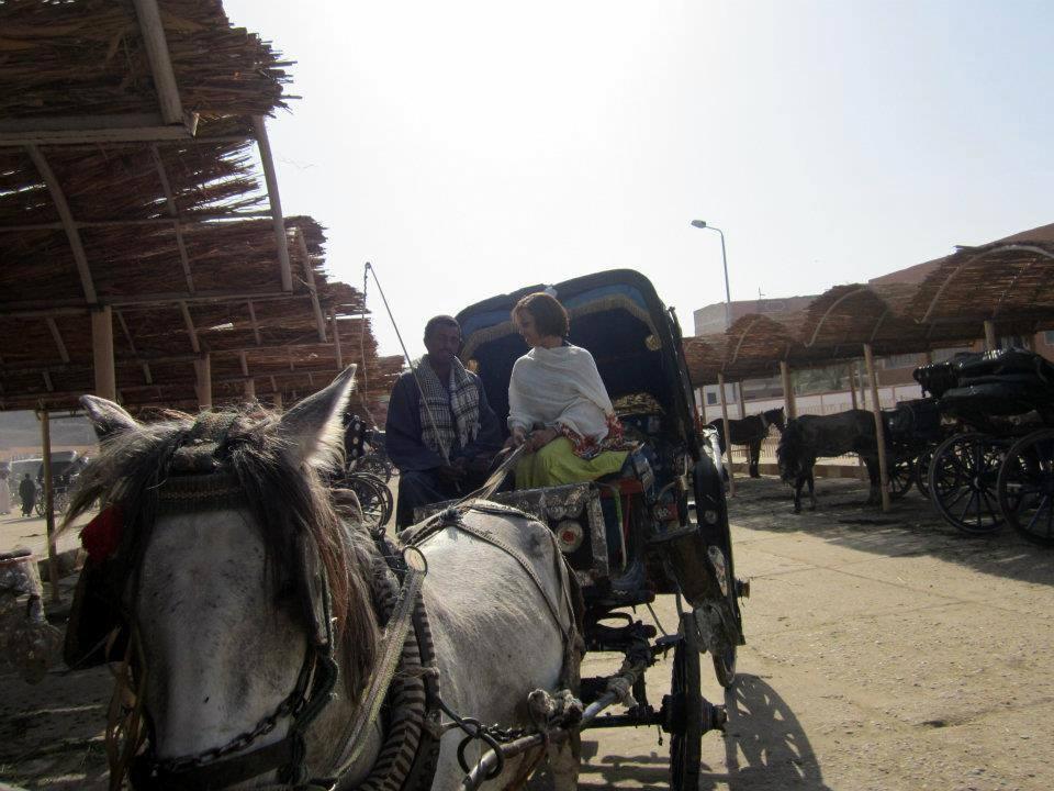 #egypt #egypttourism #rivernile#edfu #templeofhorus