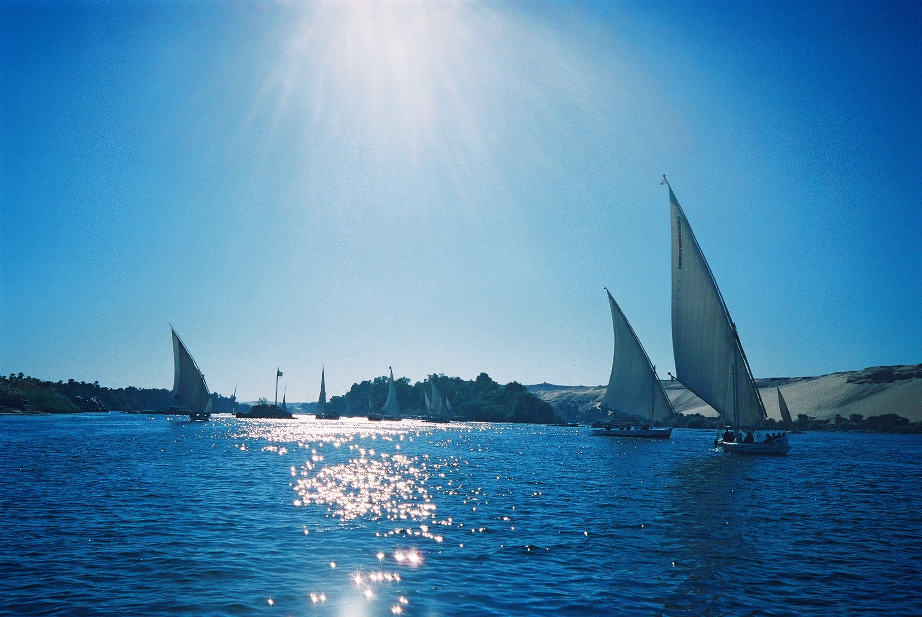 #egypt #egypttourism #aswan #aswannile #feluccasnile #nile