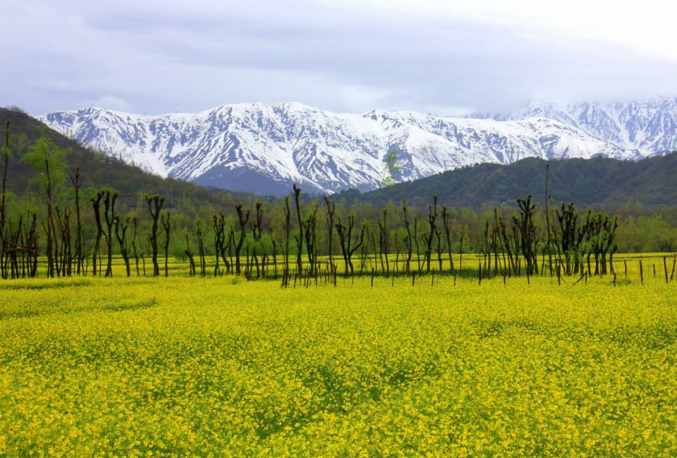 #Incredibleindia #Kashmir #Pahalgam