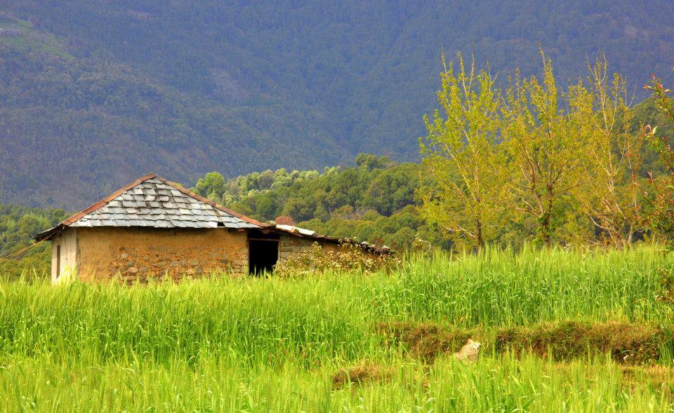 #Incredibleindia #India #Indiatourism #Birbilling